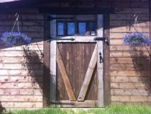 wood Deckers (1)