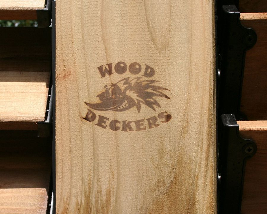 wood deckers 4 copy